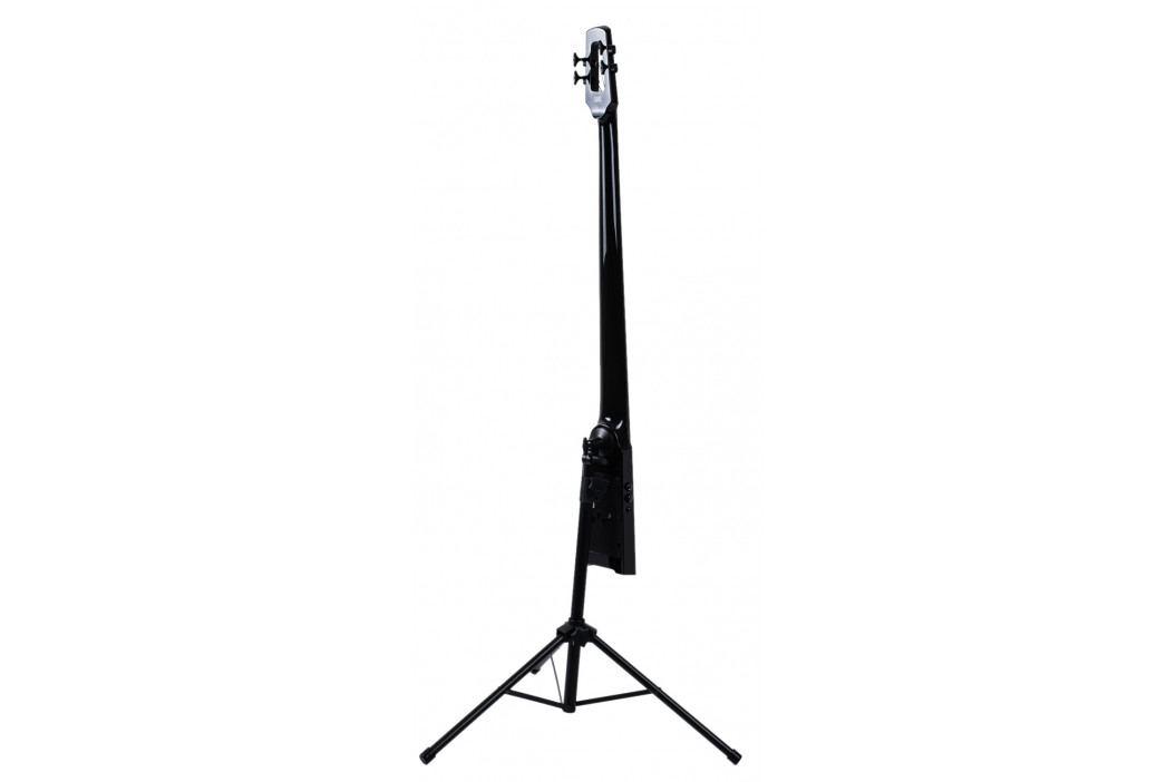 NS Design WAV4 Upright Bass Black