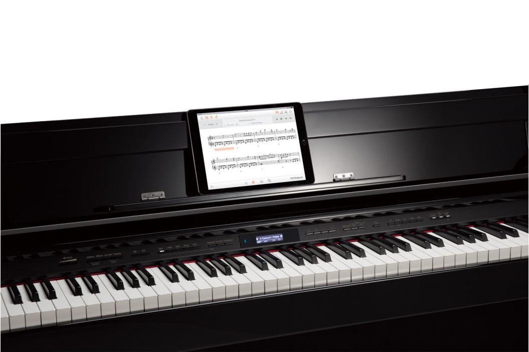 Roland DP603-PE
