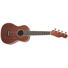 Fender Zuma Concert Ukulele WN NAT