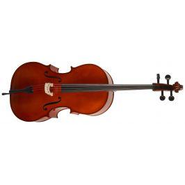 Strunal Schönbach Violoncello Academy 4/15 C W Th 4/4