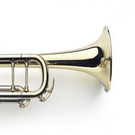 VanLaar B4 Glossy, Raw brass
