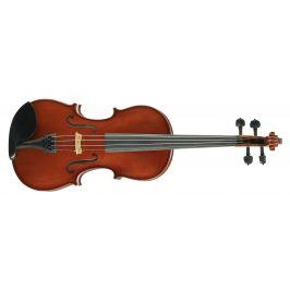 Martin W. Placht Stradivari model S