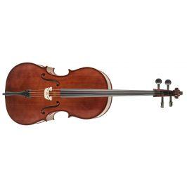 Strunal Schönbach Violoncello Academy 4/15we