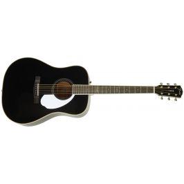 Fender LTD ED PM-1E Black