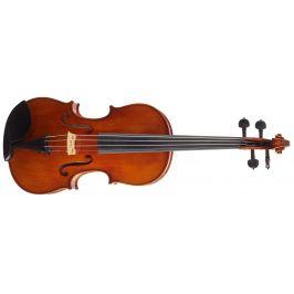 Martin W. Placht Stradivari model P
