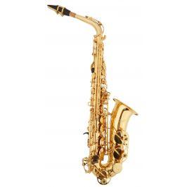Bacio Instruments SA-01L