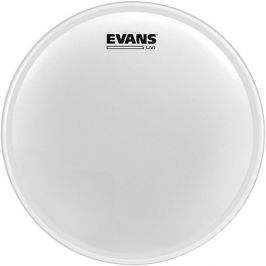 Evans 08