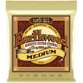 Ernie Ball Earthwood 80/20 Bronze Medium