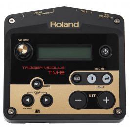 Roland TM-2 (použité)