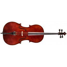 Strunal Schönbach Violoncello Academy 4/15we 4/4