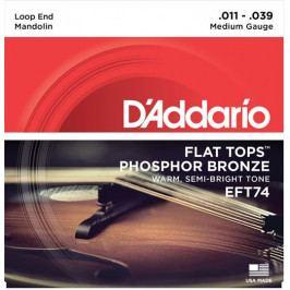 D'Addario FT-74 Mandolin Strings