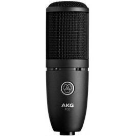 AKG P120+ Recording Microphone